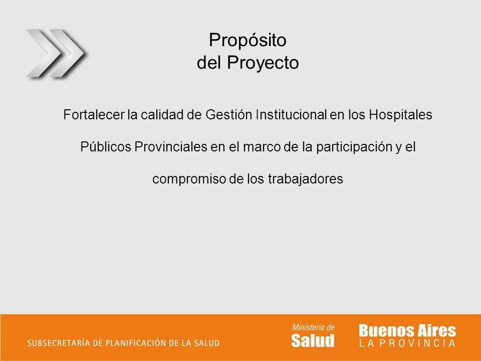 Propósito del Proyecto Fortalecer la calidad de Gestión Institucional en los Hospitales Públicos Provinciales en el marco de la participación y el com