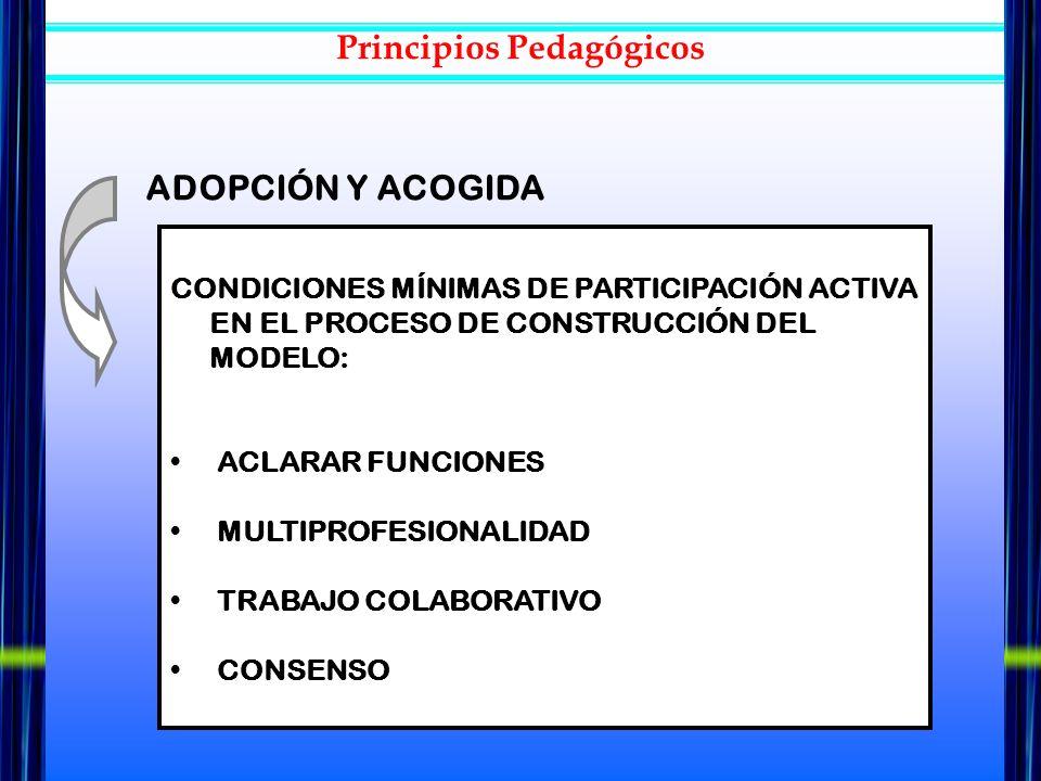 CONDICIONES MÍNIMAS DE PARTICIPACIÓN ACTIVA EN EL PROCESO DE CONSTRUCCIÓN DEL MODELO: ACLARAR FUNCIONES MULTIPROFESIONALIDAD TRABAJO COLABORATIVO CONS