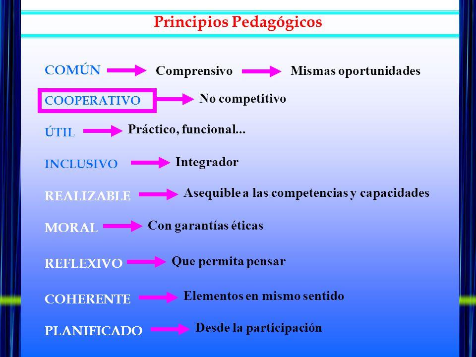 COMÚN ComprensivoMismas oportunidades COOPERATIVO ÚTIL INCLUSIVO REALIZABLE MORAL REFLEXIVO COHERENTE PLANIFICADO No competitivo Práctico, funcional..
