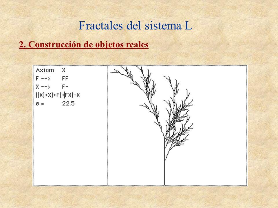 Fractales del sistema L 2. Construcción de objetos reales