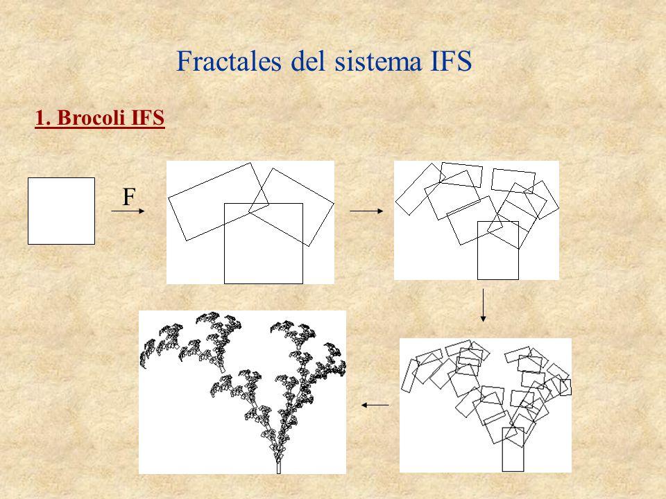 Fractales del sistema IFS 1. Brocoli IFS F