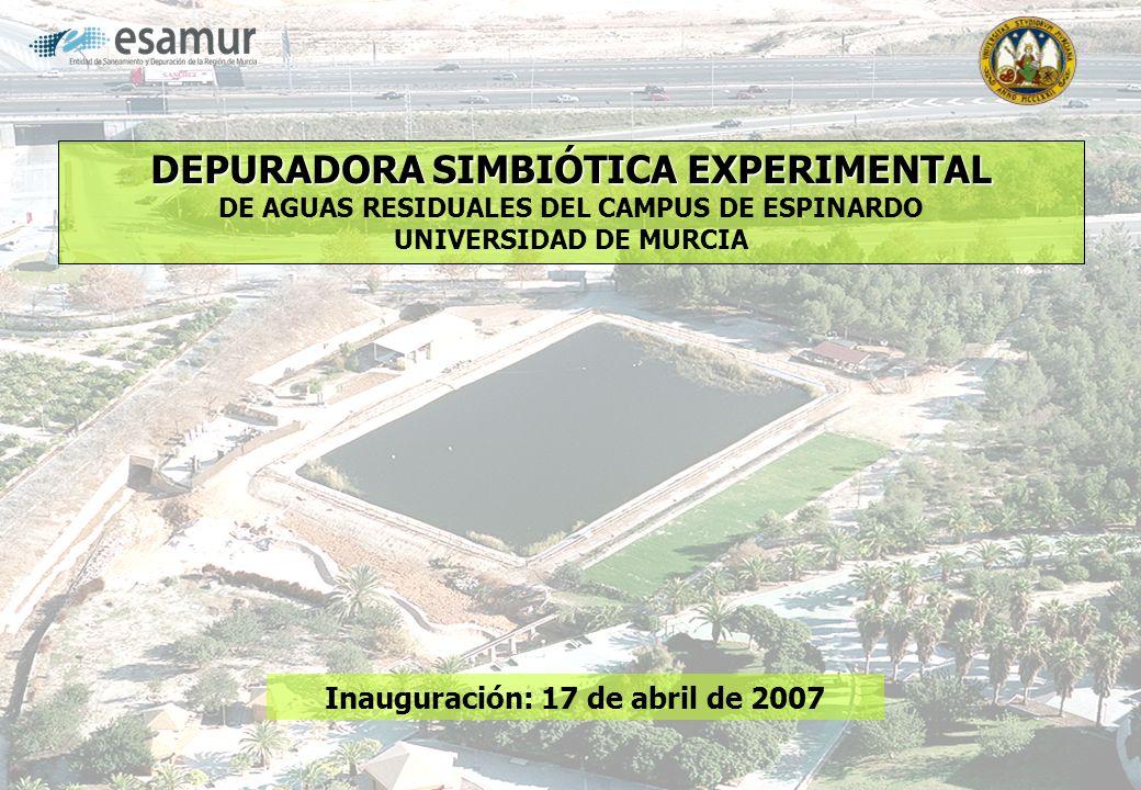 DEPURADORA SIMBIÓTICA EXPERIMENTAL DEPURADORA SIMBIÓTICA EXPERIMENTAL DE AGUAS RESIDUALES DEL CAMPUS DE ESPINARDO UNIVERSIDAD DE MURCIA Inauguración: