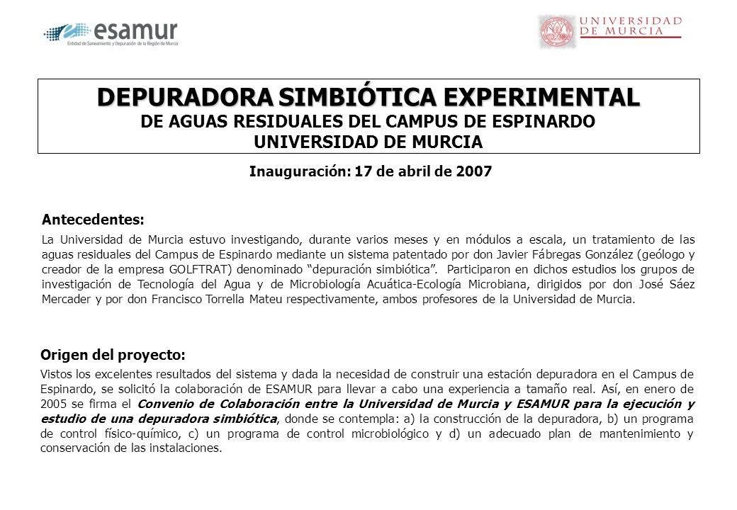 DEPURADORA SIMBIÓTICA EXPERIMENTAL DEPURADORA SIMBIÓTICA EXPERIMENTAL DE AGUAS RESIDUALES DEL CAMPUS DE ESPINARDO UNIVERSIDAD DE MURCIA Origen del pro