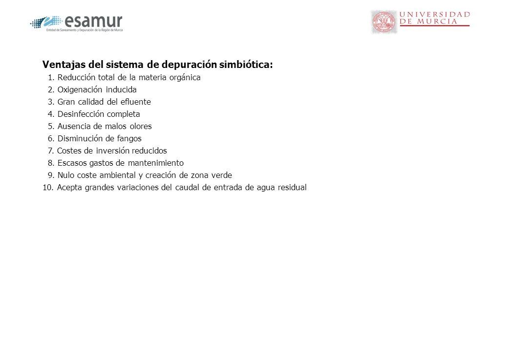 Características del sistema de depuración simbiótica gravas Tubo ranurado Flujo de agua tratada Tubería porta-goteros ZONA DE DEPURACIÓN DEPURACIÓN SIMBIÓTICA DEPURACIÓN CULTIVO HUMEDAL Lámina impermeable