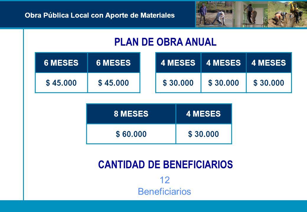 CANTIDAD DE BENEFICIARIOS 6 MESES $ 45.000 4 MESES $ 30.000 12 Beneficiarios 8 MESES4 MESES $ 60.000$ 30.000 PLAN DE OBRA ANUAL Obra Pública Local con