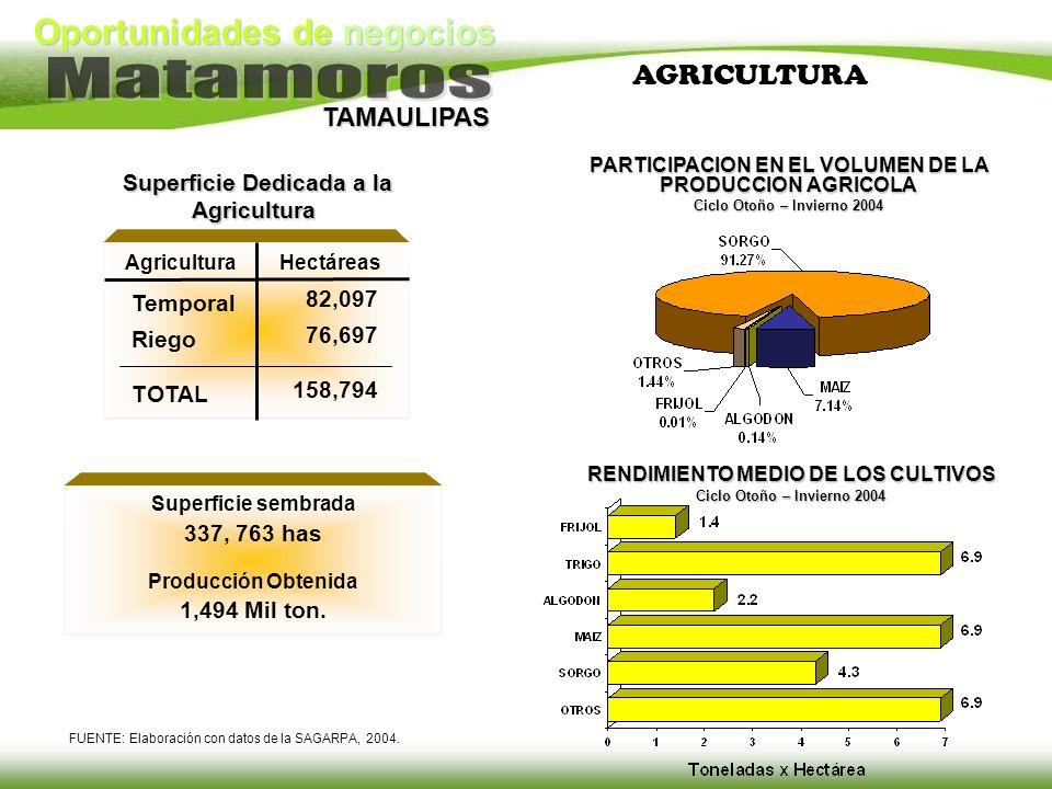 Oportunidades de negocios TAMAULIPAS AGRICULTURA FUENTE: Elaboración con datos de la SAGARPA, 2004. Superficie sembrada 337, 763 has Producción Obteni