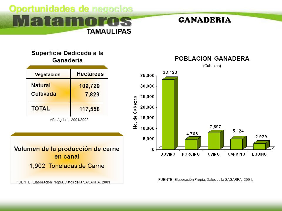 Oportunidades de negocios TAMAULIPAS GANADERIA Volumen de la producción de carne en canal 1,902 Toneladas de Carne FUENTE: Elaboración Propia. Datos d