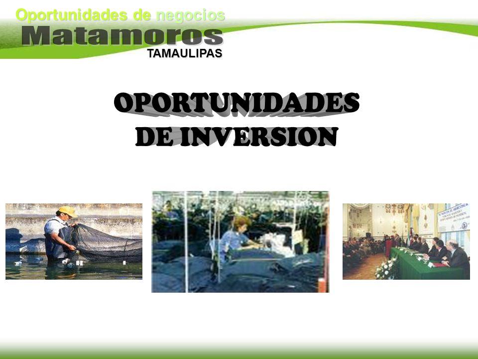Oportunidades de negocios TAMAULIPAS
