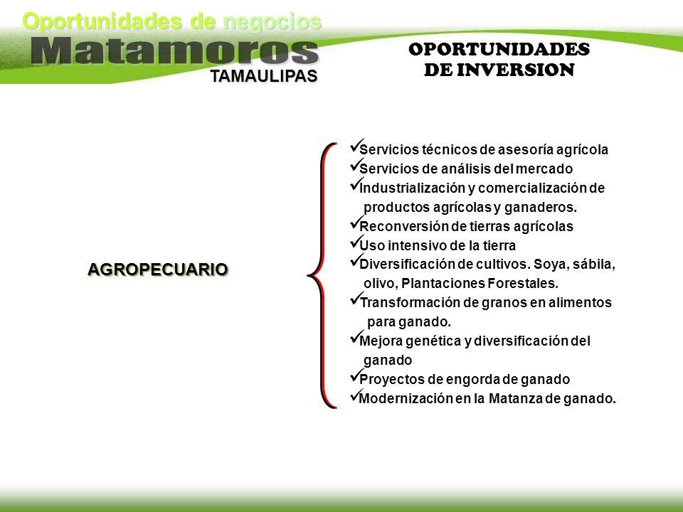 Oportunidades de negocios TAMAULIPAS AGROPECUARIO Servicios técnicos de asesoría agrícola Servicios de análisis del mercado Industrialización y comerc