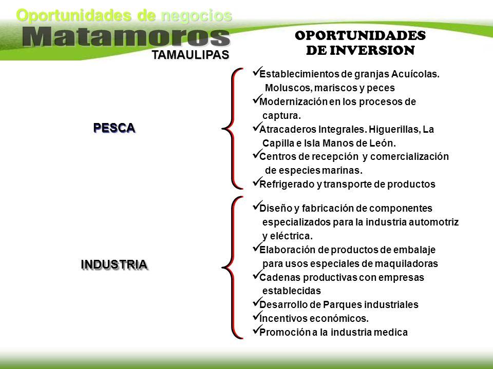 Oportunidades de negocios TAMAULIPAS INDUSTRIA Diseño y fabricación de componentes especializados para la industria automotriz y eléctrica. Elaboració