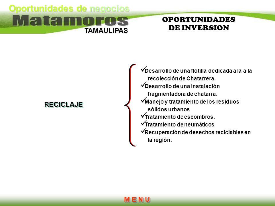 Oportunidades de negocios TAMAULIPAS RECICLAJE Desarrollo de una flotilla dedicada a la a la recolección de Chatarrera. Desarrollo de una instalación