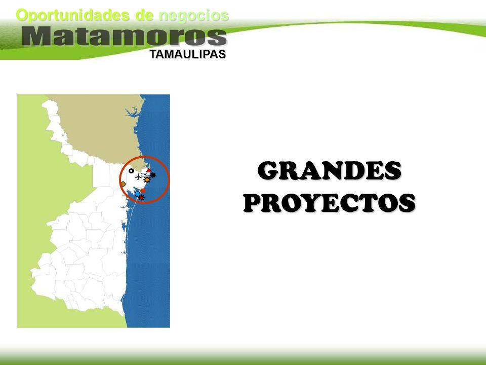 Oportunidades de negocios TAMAULIPAS GRANDES PROYECTOS