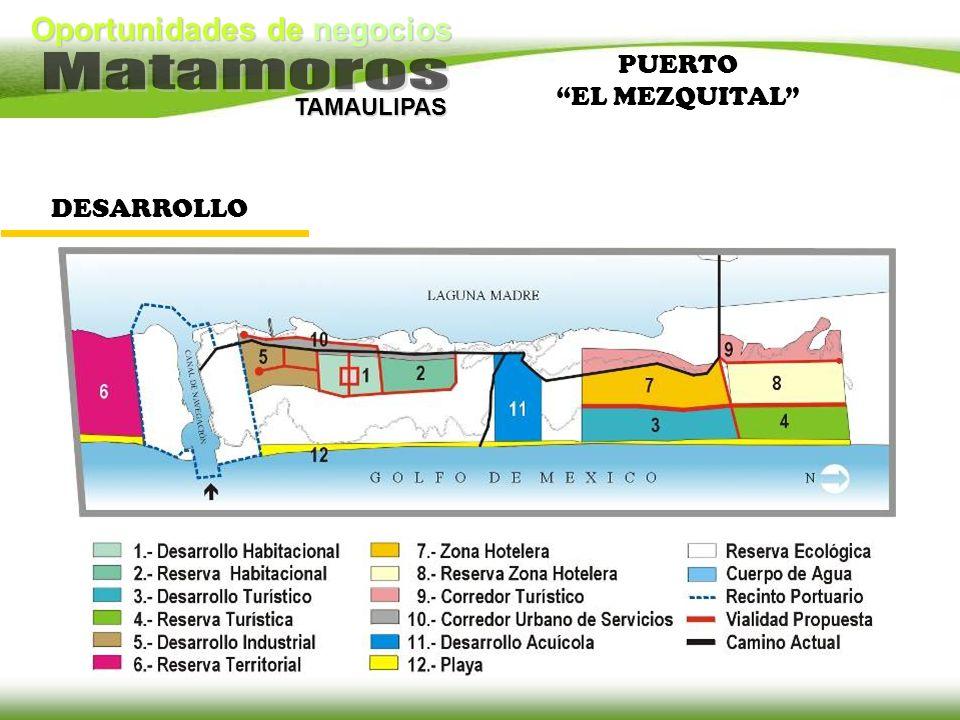 Oportunidades de negocios TAMAULIPAS DESARROLLO PUERTO EL MEZQUITAL