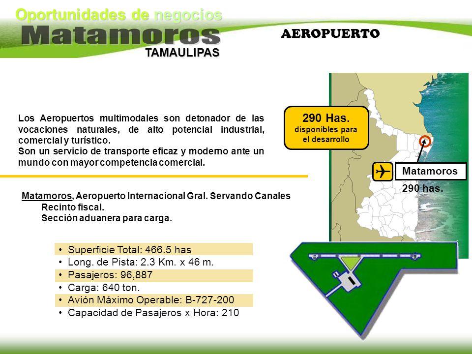 Oportunidades de negocios TAMAULIPAS AEROPUERTO Los Aeropuertos multimodales son detonador de las vocaciones naturales, de alto potencial industrial,