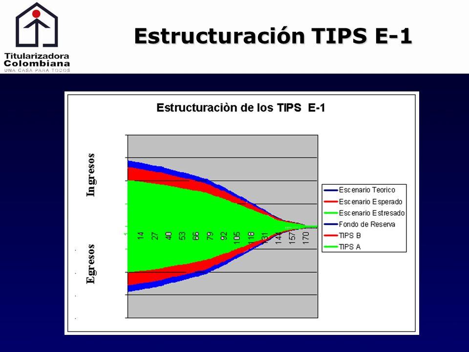 Estructuración TIPS E-1