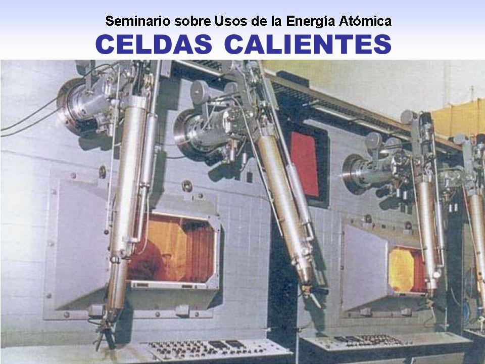 CELDAS CALIENTES