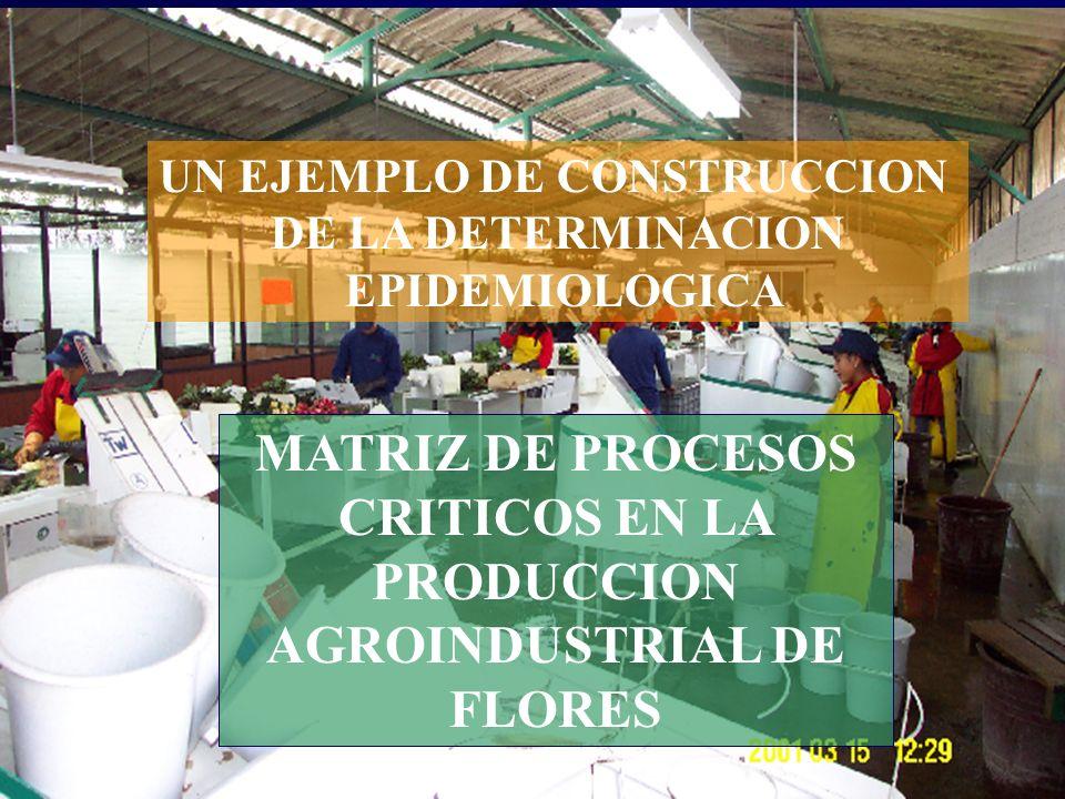 J. Breilh (Epidemiología Crítica 2003) UN EJEMPLO DE CONSTRUCCION DE LA DETERMINACION EPIDEMIOLOGICA MATRIZ DE PROCESOS CRITICOS EN LA PRODUCCION AGRO