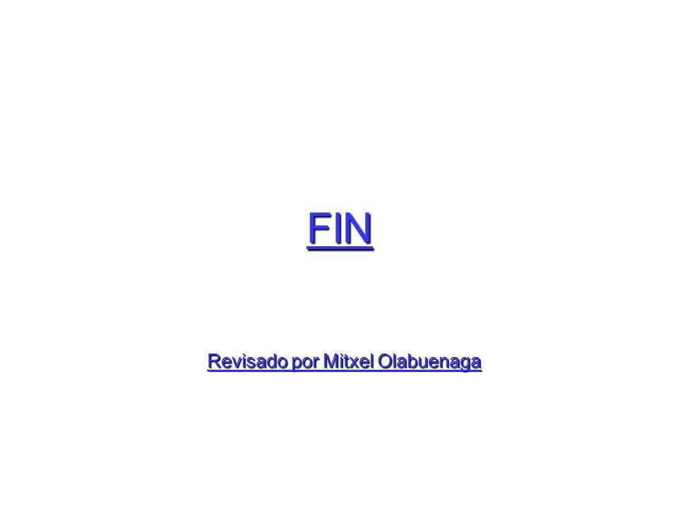 FIN Revisado por Mitxel Olabuenaga