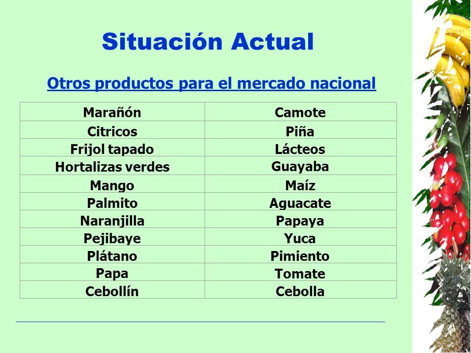 Situación Actual Otros productos para el mercado nacional MarañónCamote CitricosPiña Frijol tapadoLácteos Hortalizas verdesGuayaba MangoMaíz PalmitoAg