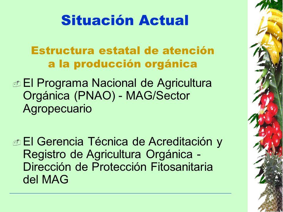 Situación Actual El Programa Nacional de Agricultura Orgánica (PNAO) - MAG/Sector Agropecuario El Gerencia Técnica de Acreditación y Registro de Agric