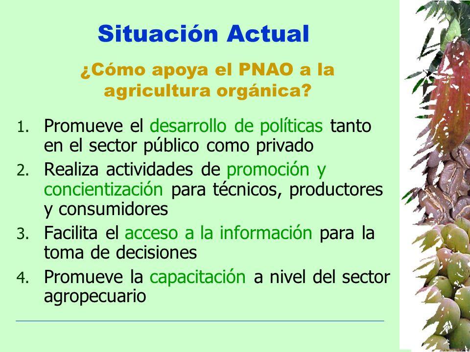 Situación Actual ¿Cómo apoya el PNAO a la agricultura orgánica? 1. Promueve el desarrollo de políticas tanto en el sector público como privado 2. Real