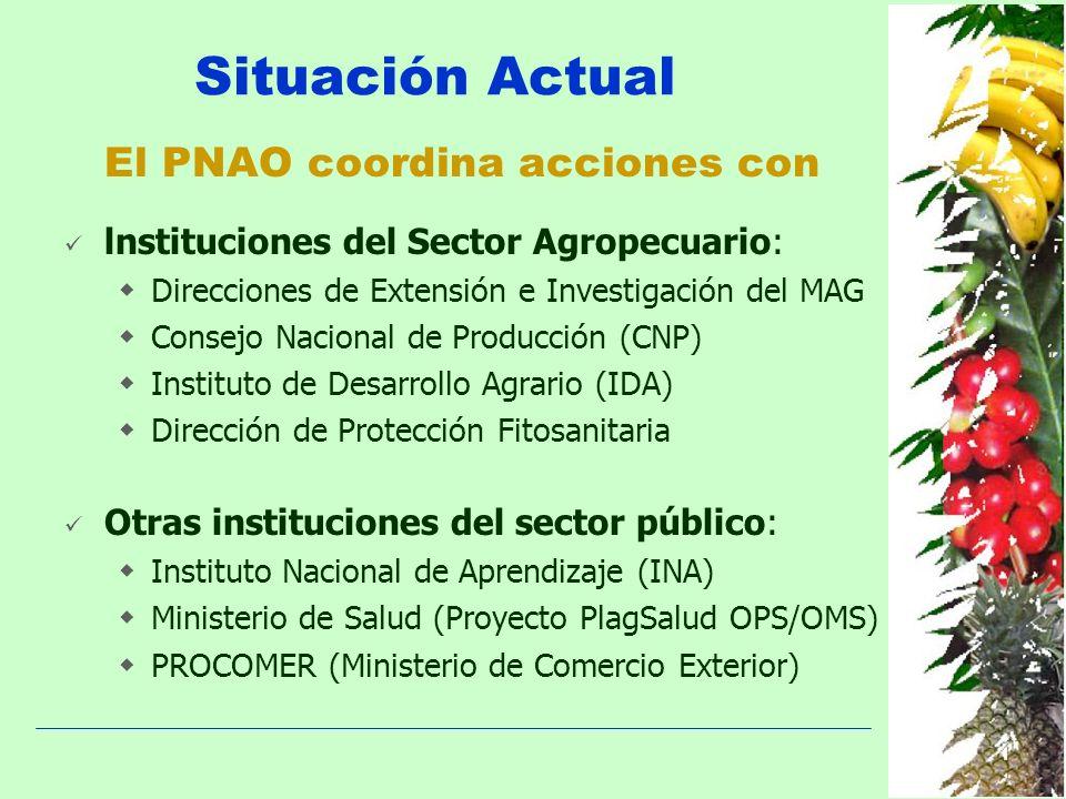 lnstituciones del Sector Agropecuario: Direcciones de Extensión e Investigación del MAG Consejo Nacional de Producción (CNP) Instituto de Desarrollo A