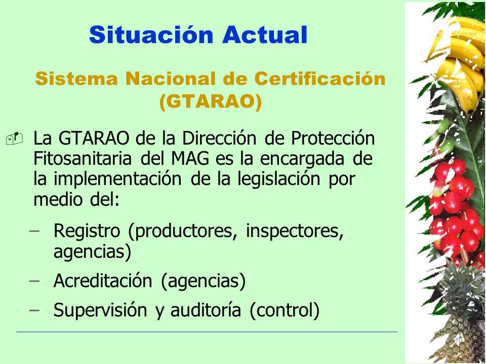 Situación Actual Sistema Nacional de Certificación (GTARAO) La GTARAO de la Dirección de Protección Fitosanitaria del MAG es la encargada de la implem