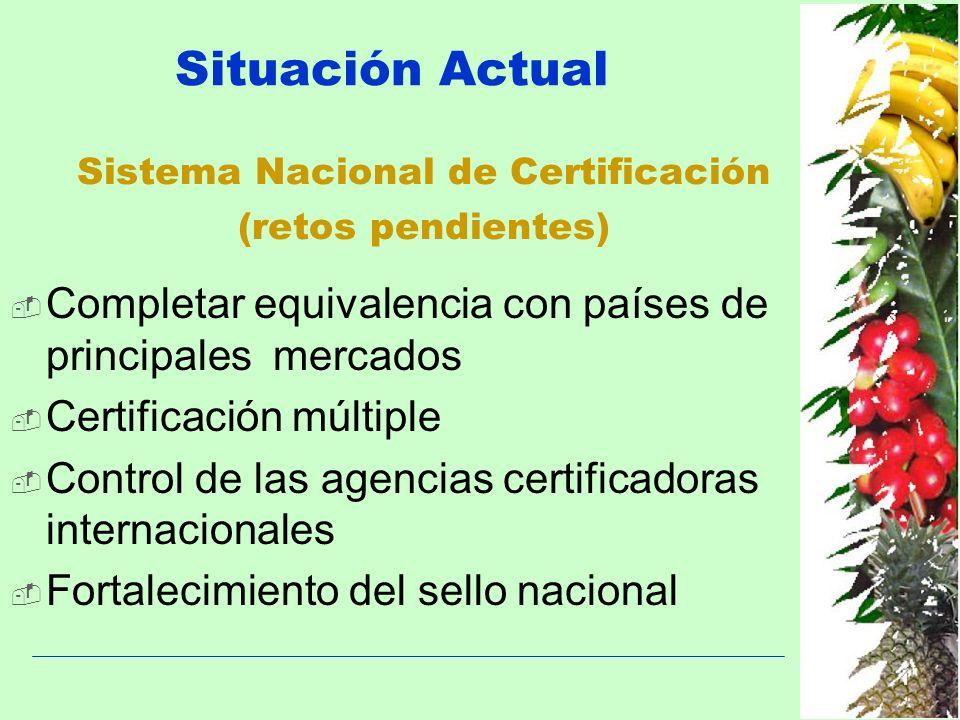 Situación Actual Completar equivalencia con países de principales mercados Certificación múltiple Control de las agencias certificadoras internacional