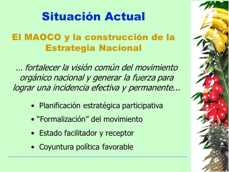 Situación Actual El MAOCO y la construcción de la Estrategia Nacional... fortalecer la visión común del movimiento orgánico nacional y generar la fuer