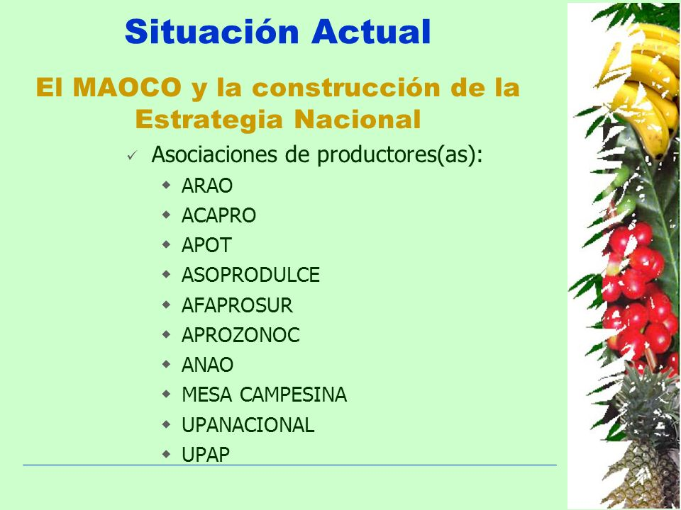 Situación Actual El MAOCO y la construcción de la Estrategia Nacional Asociaciones de productores(as): ARAO ACAPRO APOT ASOPRODULCE AFAPROSUR APROZONO