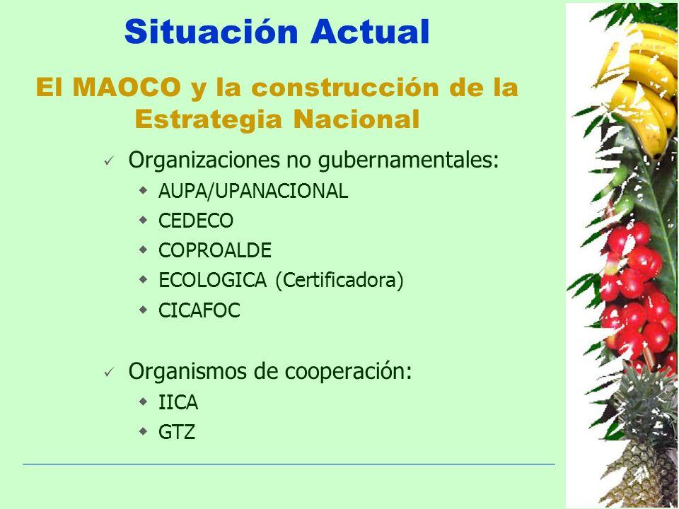 Situación Actual El MAOCO y la construcción de la Estrategia Nacional Organizaciones no gubernamentales: AUPA/UPANACIONAL CEDECO COPROALDE ECOLOGICA (