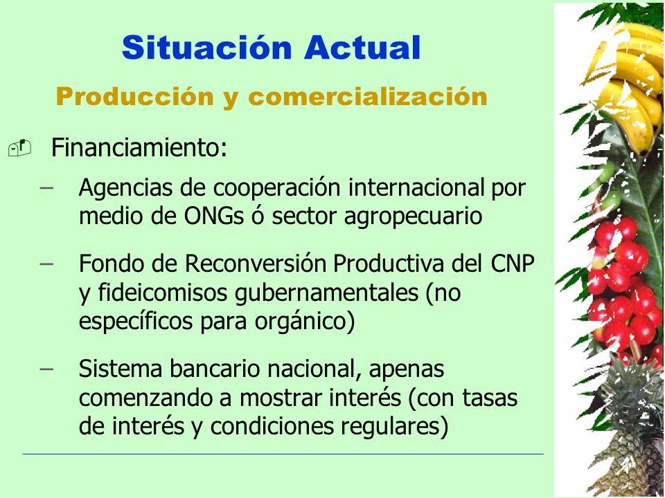 Producción y comercialización Situación Actual Financiamiento: –Agencias de cooperación internacional por medio de ONGs ó sector agropecuario –Fondo d