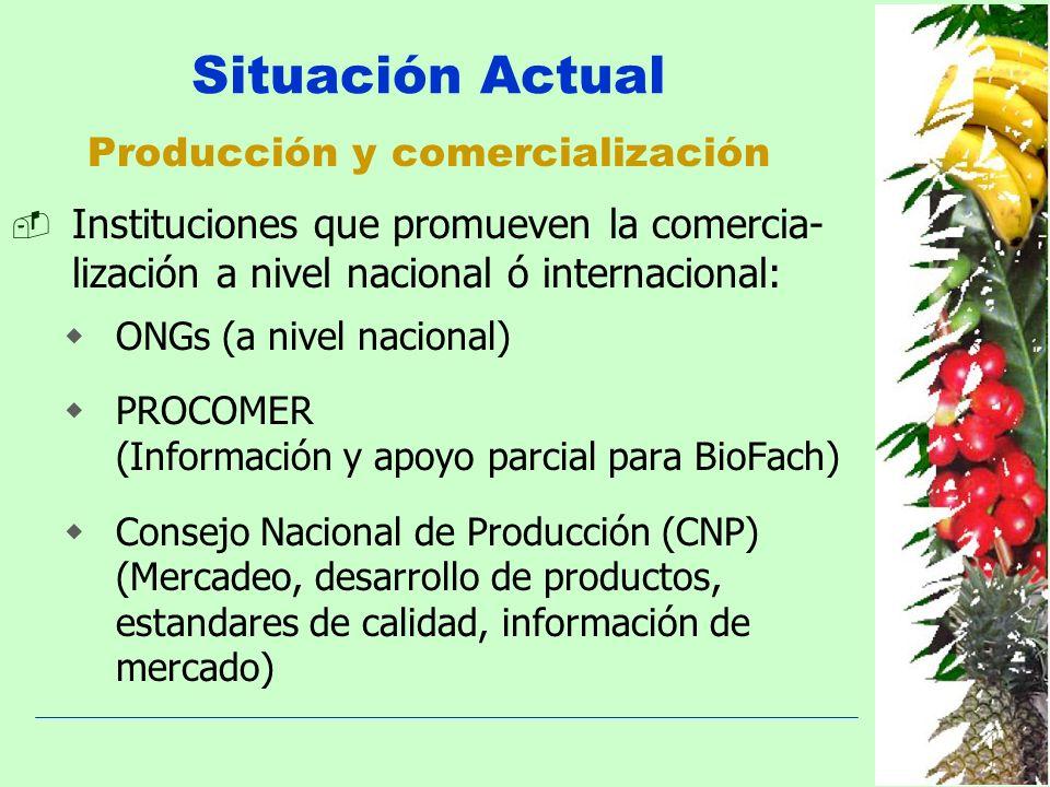 Producción y comercialización Situación Actual Instituciones que promueven la comercia- lización a nivel nacional ó internacional: ONGs (a nivel nacio