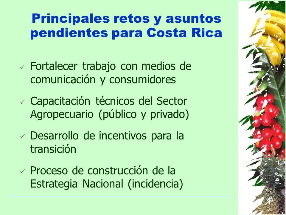 Principales retos y asuntos pendientes para Costa Rica Fortalecer trabajo con medios de comunicación y consumidores Capacitación técnicos del Sector A