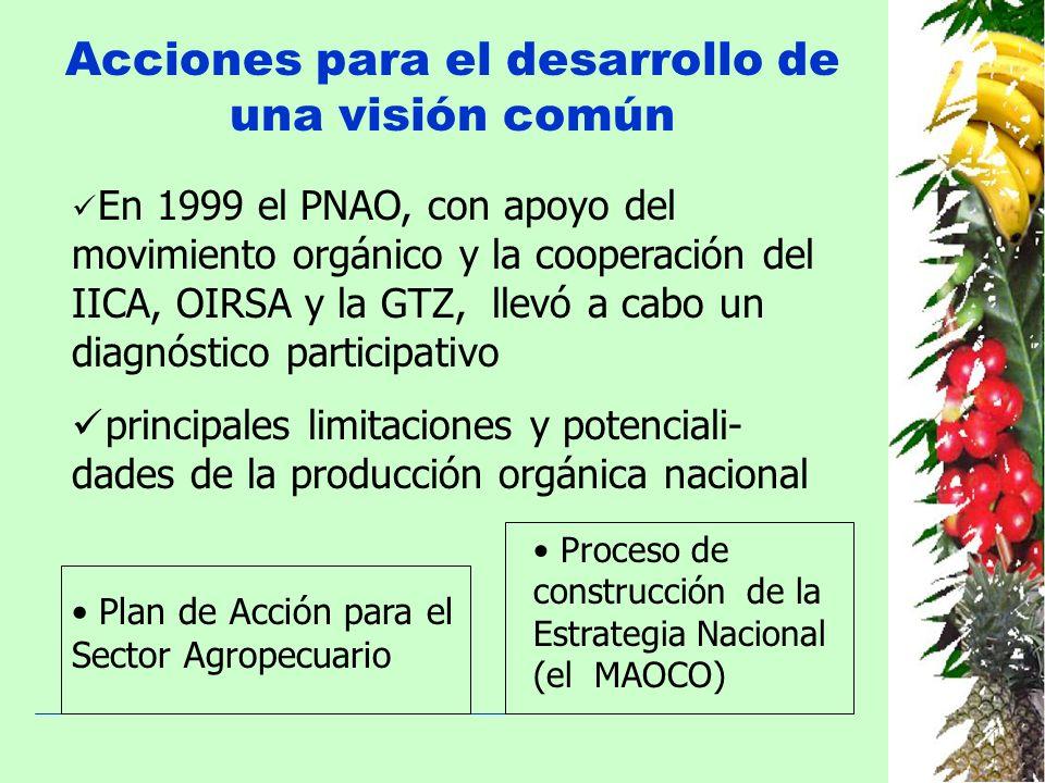 Acciones para el desarrollo de una visión común En 1999 el PNAO, con apoyo del movimiento orgánico y la cooperación del IICA, OIRSA y la GTZ, llevó a