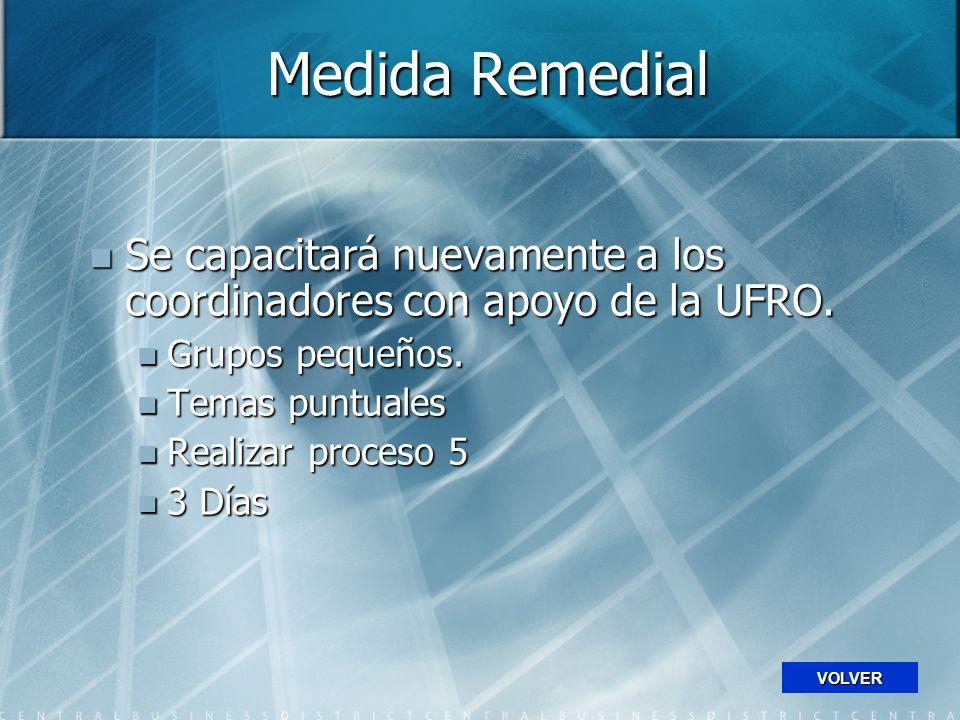 Medida Remedial Se capacitará nuevamente a los coordinadores con apoyo de la UFRO.