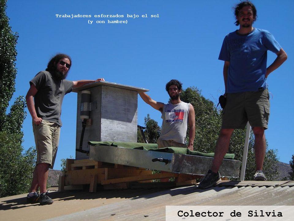 Colector de Silvia Trabajadores esforzados bajo el sol (y con hambre)