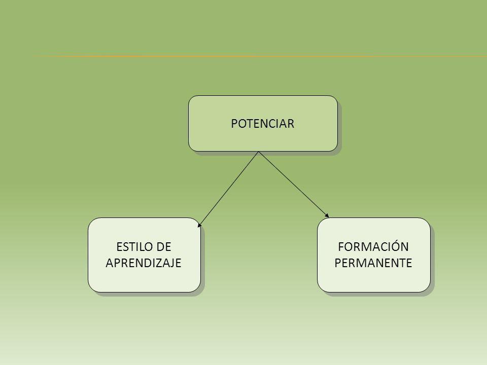 POTENCIAR ESTILO DE APRENDIZAJE FORMACIÓN PERMANENTE