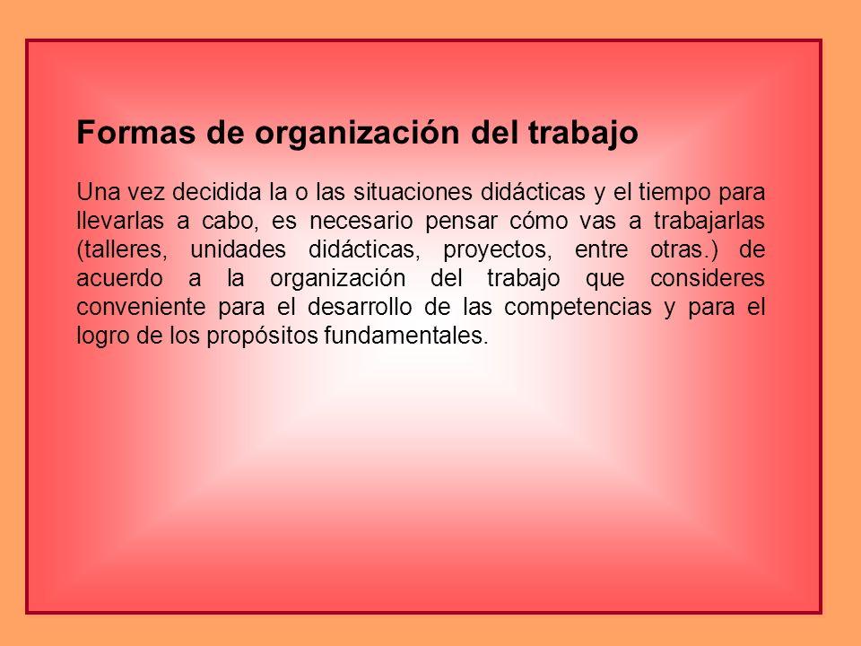 Formas de organización del trabajo Una vez decidida la o las situaciones didácticas y el tiempo para llevarlas a cabo, es necesario pensar cómo vas a