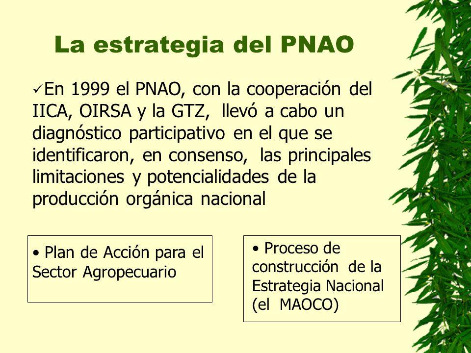 La estrategia del PNAO En 1999 el PNAO, con la cooperación del IICA, OIRSA y la GTZ, llevó a cabo un diagnóstico participativo en el que se identifica