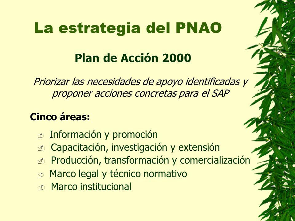 La estrategia del PNAO Plan de Acción 2000 Información y promoción Capacitación, investigación y extensión Producción, transformación y comercialización Marco legal y técnico normativo Marco institucional Priorizar las necesidades de apoyo identificadas y proponer acciones concretas para el SAP Cinco áreas: