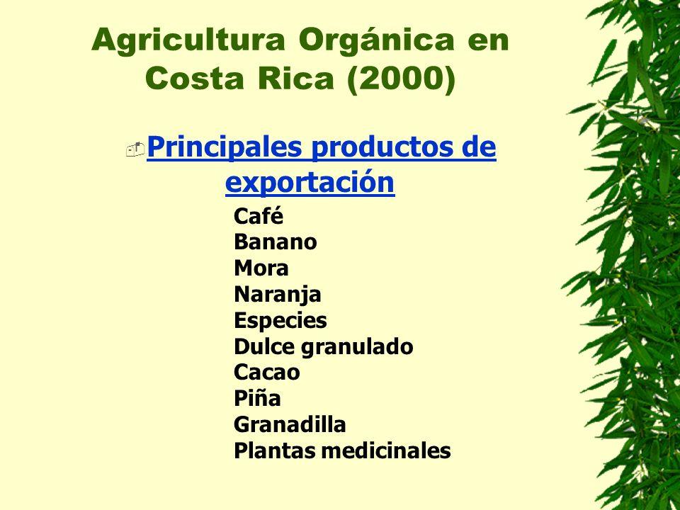 Agricultura Orgánica en Costa Rica (2000) Otros productos para el mercado nacional MarañónCamote CitricosPiña Frijol tapadoLácteos Hortalizas verdesGuayaba MangoMaíz PalmitoAguacate NaranjillaPapaya PejibayeYuca PlátanoPimiento PapaTomate CebollínCebolla