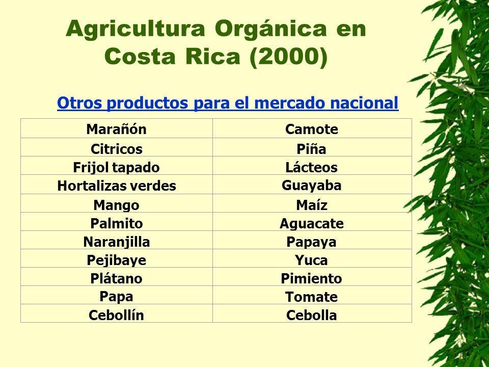 Agricultura Orgánica en Costa Rica (2000) Otros productos para el mercado nacional MarañónCamote CitricosPiña Frijol tapadoLácteos Hortalizas verdesGu