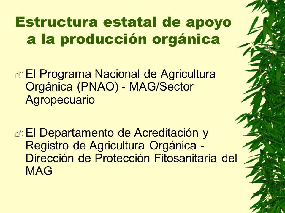 El Programa Nacional de Agricultura Orgánica (PNAO) - MAG/Sector Agropecuario El Departamento de Acreditación y Registro de Agricultura Orgánica - Dirección de Protección Fitosanitaria del MAG Estructura estatal de apoyo a la producción orgánica