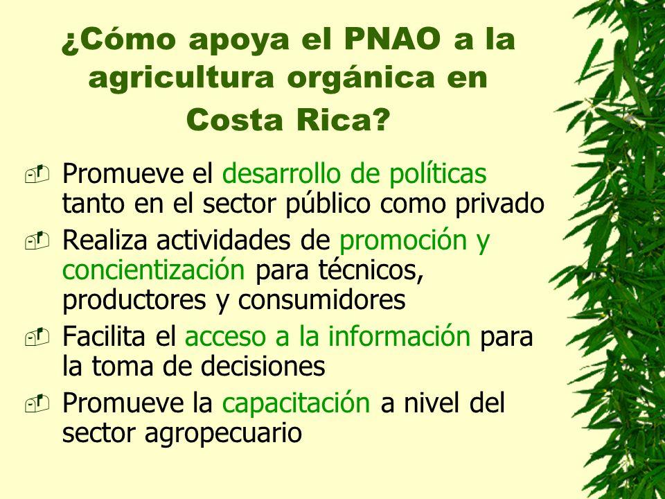 ¿Cómo apoya el PNAO a la agricultura orgánica en Costa Rica? Promueve el desarrollo de políticas tanto en el sector público como privado Realiza activ