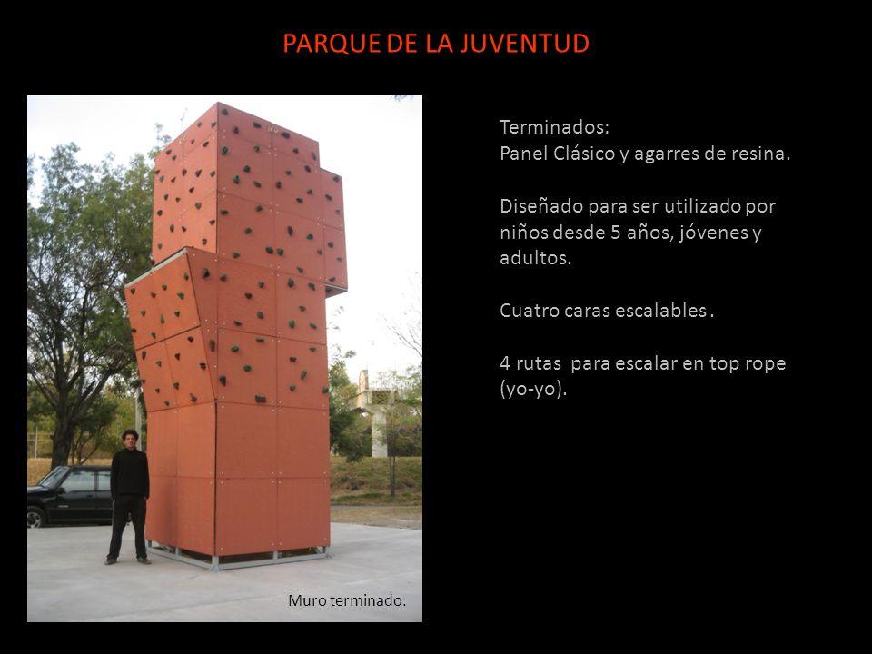 Terminados: Panel Clásico y agarres de resina. Diseñado para ser utilizado por niños desde 5 años, jóvenes y adultos. Cuatro caras escalables. 4 rutas