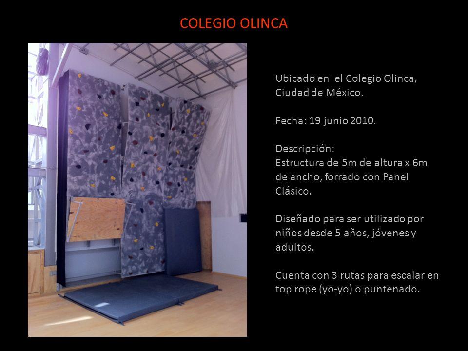 Ubicado en el Colegio Olinca, Ciudad de México. Fecha: 19 junio 2010. Descripción: Estructura de 5m de altura x 6m de ancho, forrado con Panel Clásico