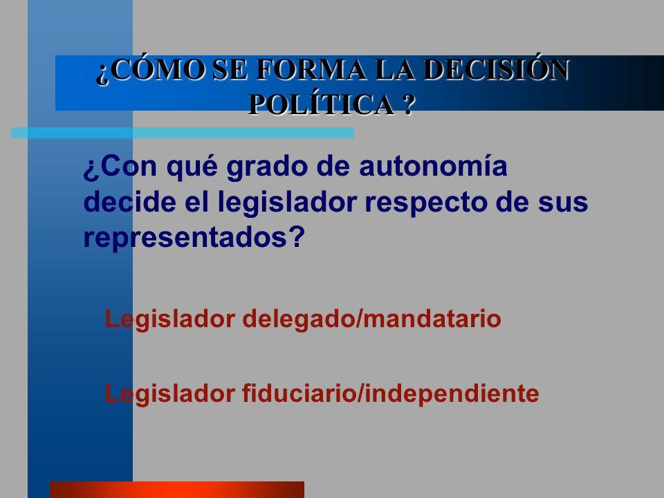 ¿CÓMO SE FORMA LA DECISIÓN POLÍTICA .