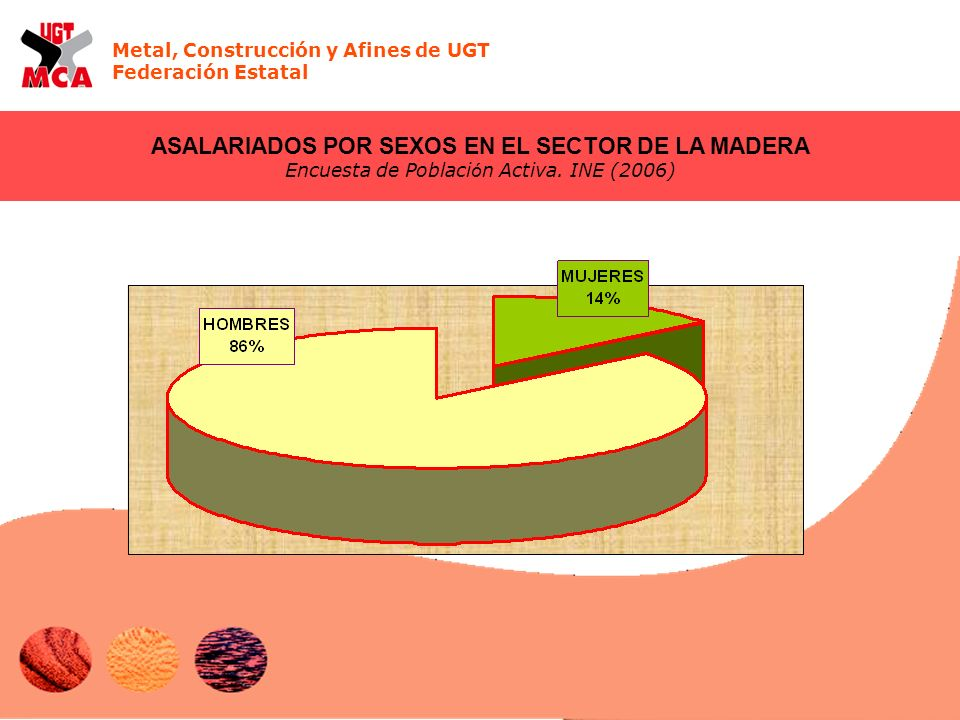 Metal, Construcción y Afines de UGT Federación Estatal ASALARIADOS POR SEXOS EN EL SECTOR DE LA MADERA Encuesta de Poblaci ó n Activa. INE (2006)