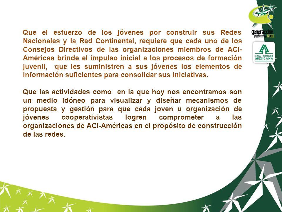 Que el esfuerzo de los jóvenes por construir sus Redes Nacionales y la Red Continental, requiere que cada uno de los Consejos Directivos de las organi